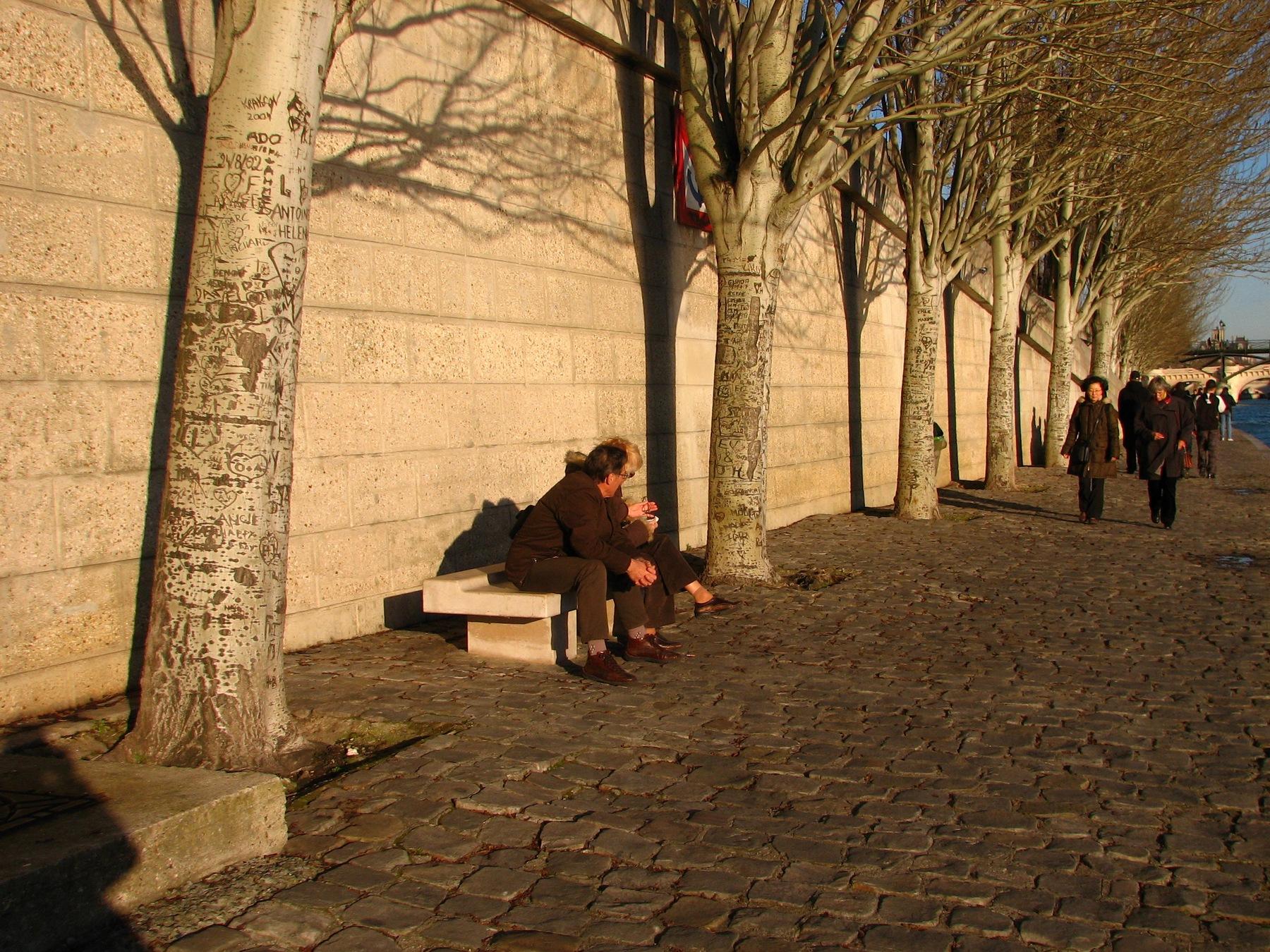 Bäume an der Promenade der Seine