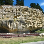 Felsen mit Maori-Zeichnungen