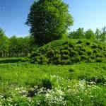 Hügelgrab, Borre Nationalpark